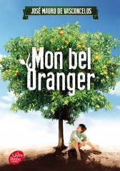 mon bel oranger, enfant précoce, surdoué, zèbre, hqi, José Mauro de vasconcelos