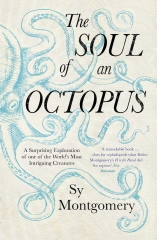 the soul of an octopus, sy Montgomery, l'âme d'une pieuvre