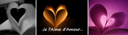 l'affaire jane eyre,délivrez-moi, jasper fforde, le livre du dimanche, books are my wonderland, thursday next